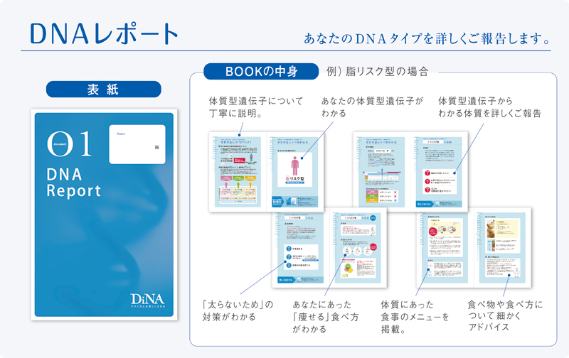 DNAレポート